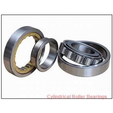 85 x 7.087 Inch | 180 Millimeter x 1.614 Inch | 41 Millimeter  NSK NUP317W  Cylindrical Roller Bearings