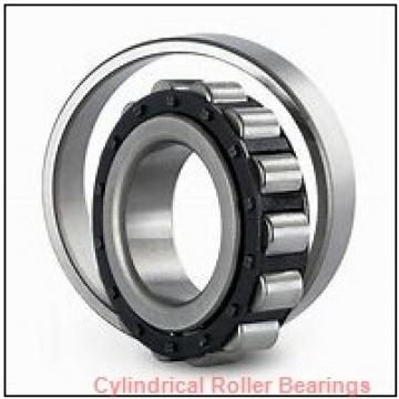 FAG NUP2211-E-M1  Cylindrical Roller Bearings