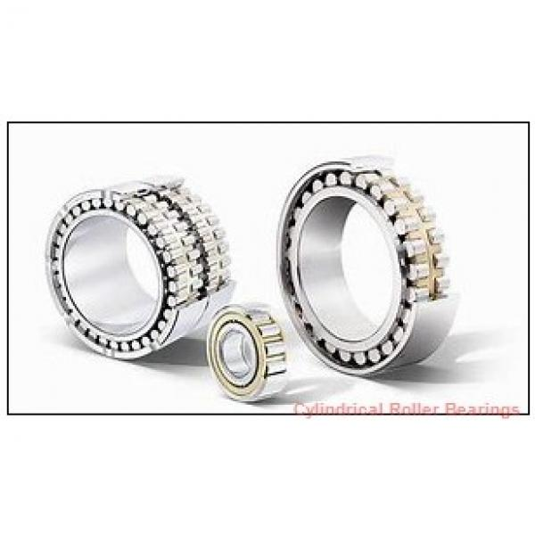 FAG NUP2213-E-M1-C3  Cylindrical Roller Bearings #1 image