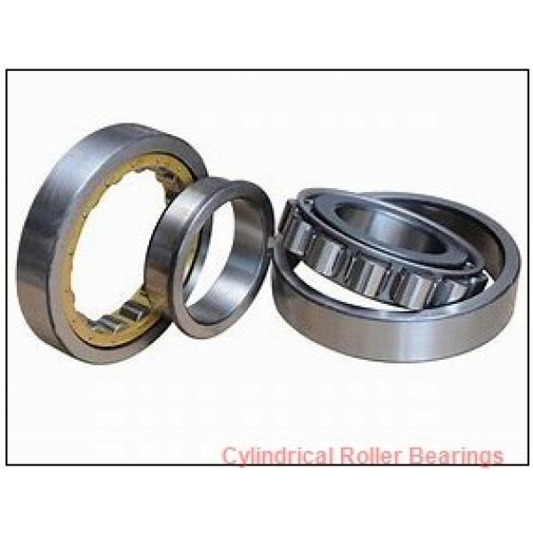 40 mm x 80 mm x 23 mm  FAG NUP2208-E-TVP2  Cylindrical Roller Bearings #1 image